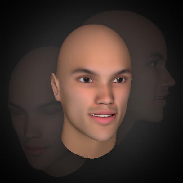 heads hair - men 3d model