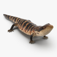 3d model blue tongued skink pose