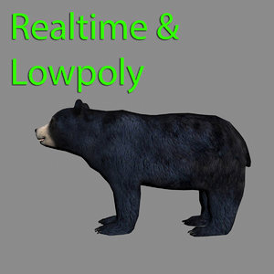 3d model black bear