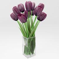 realictic dark tulips max