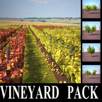 vineyard pack 3d max