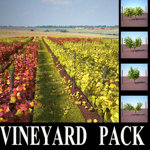 vineyard pack 3d max