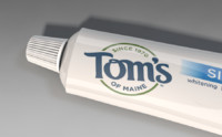 toothpaste toms toothbrush 3d model