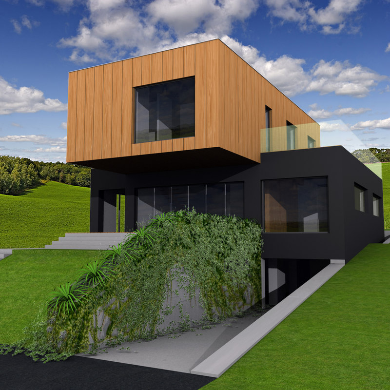 contemporary family house max
