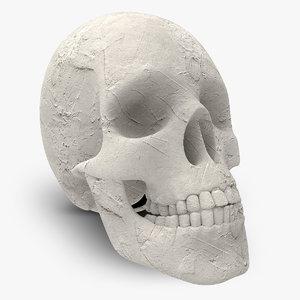 3d plaster skull