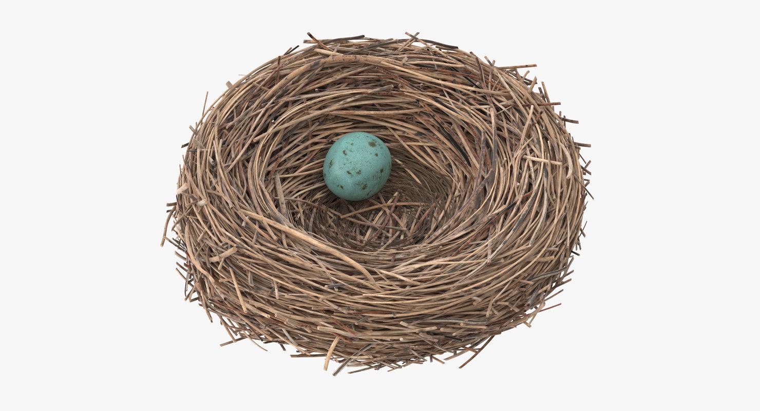 3d bird nest 03