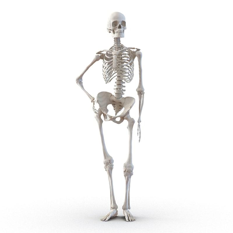 3d Human Female Skeleton Pose