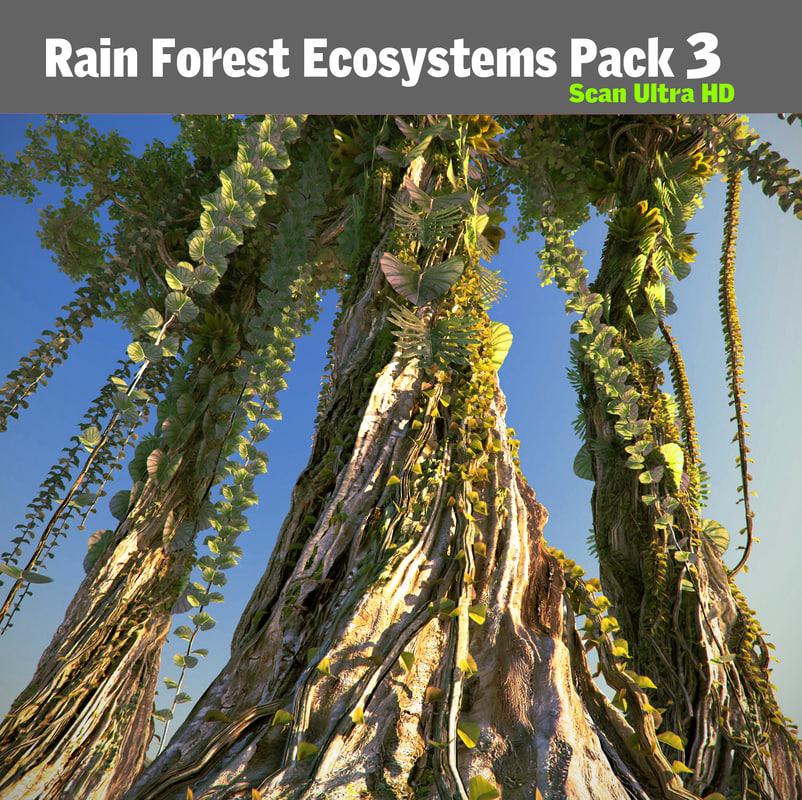 3d model rain forest pack 3