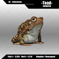 Toad Animated