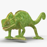 3d chameleon rigged model