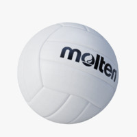 volleyball molten 3d model
