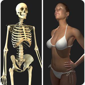 rigged skeleton female combo 3d model