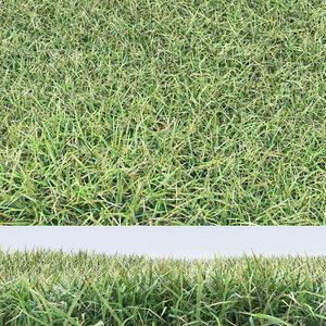 realistic grass max
