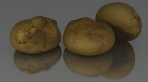 3d bread scan