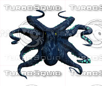 3d model marine octopus