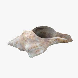 3d conch underwater scanning