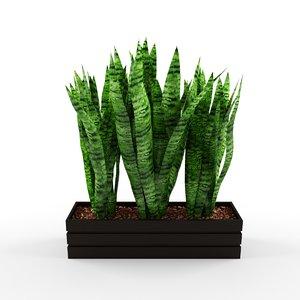 fbx plant box