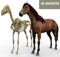 3ds horse skeleton