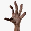 Zombie Arm 3D models