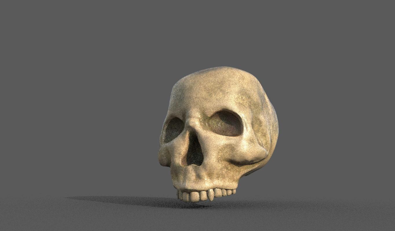 3d skull model