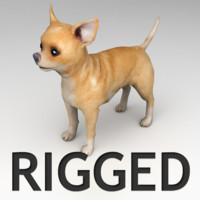 Chihuahua Rigged