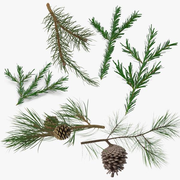 3d 3 pine tree sprig