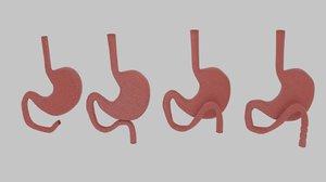 curve stomach 3d 3ds