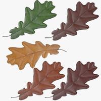 oak leafs 3d model