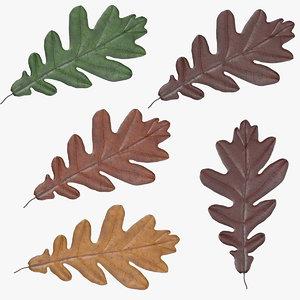 3d x oak leafs 05