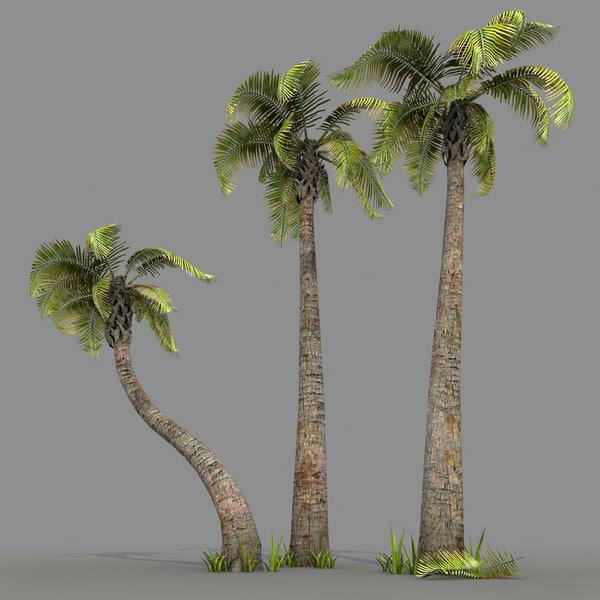set palm trees 3d max