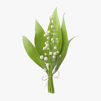 3d model bouquet lily valley -
