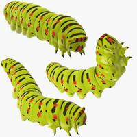 caterpillar poses max