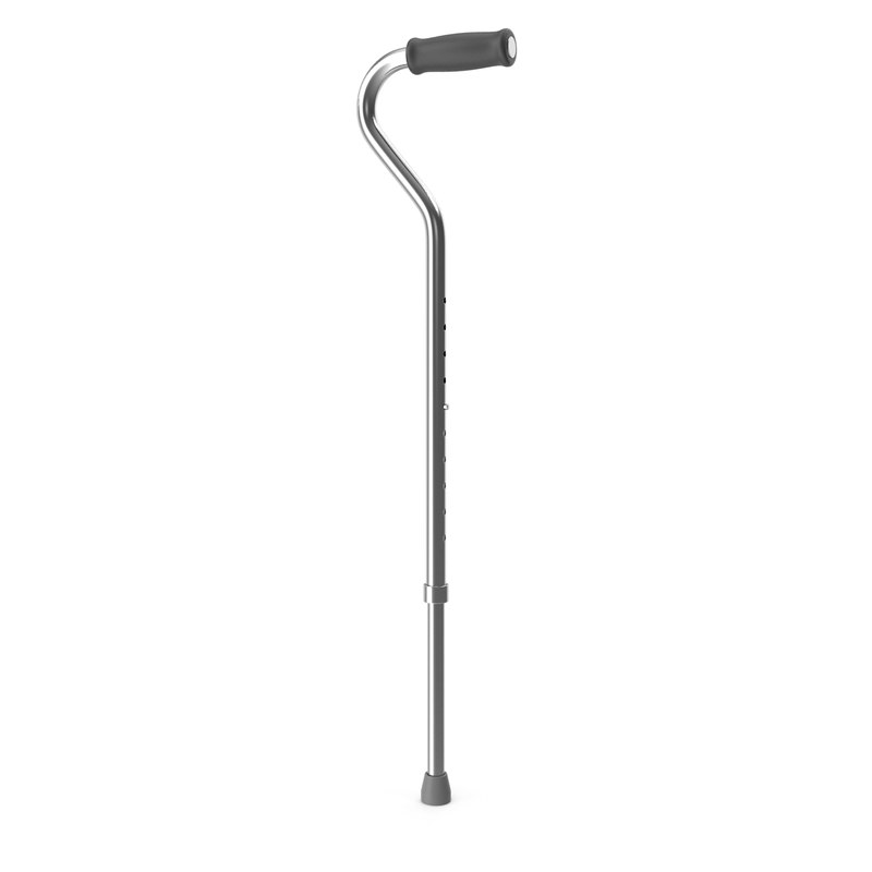 3d cane model