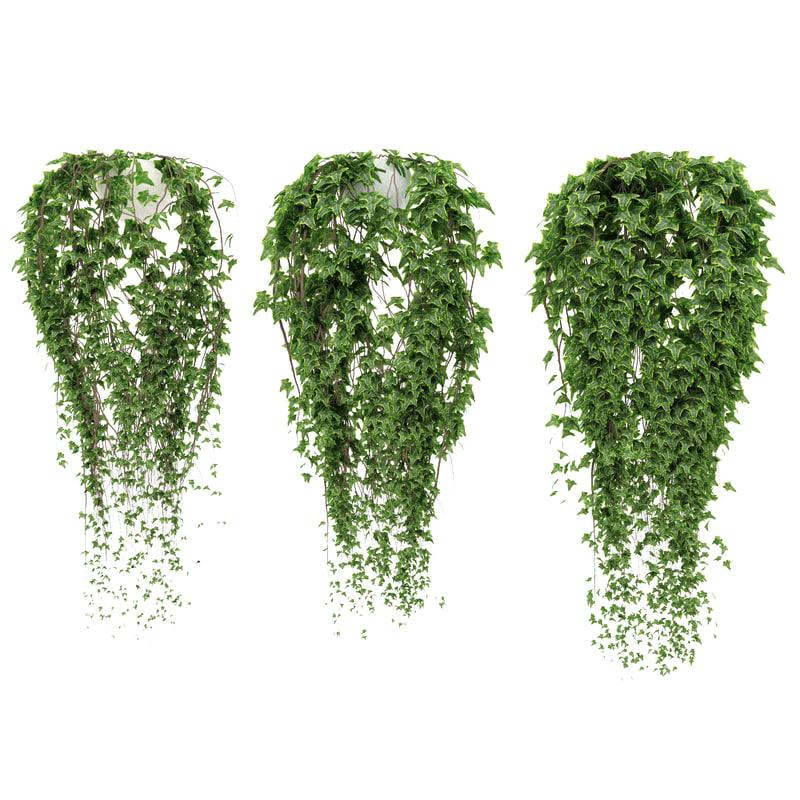 3d pots ivy