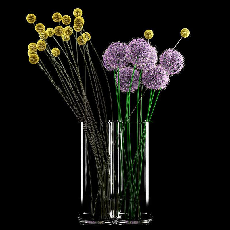 craspedia allium flowers 3d model