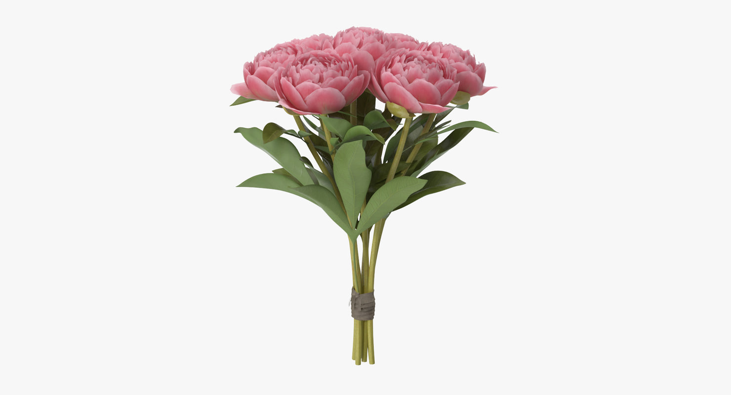 peony bouquet - 3d model
