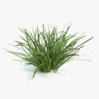 3d flag grass