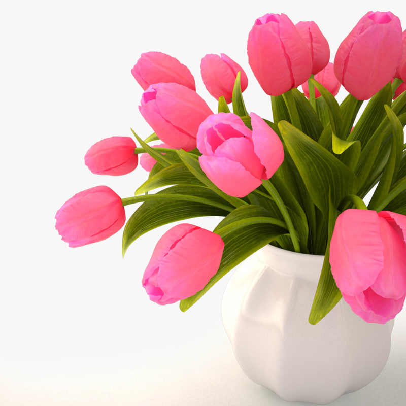 3ds tulips bouquet pink