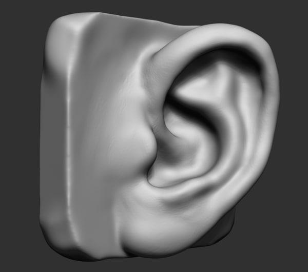 3d ear ztl stl model