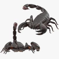scorpion poses 3d max