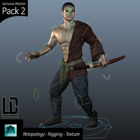 Samurai Warrior - Pack 2
