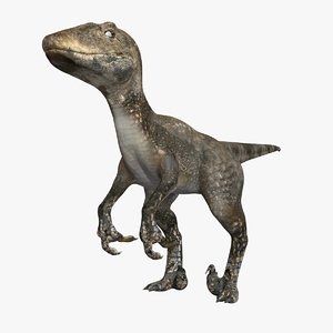 velociraptor raptor max