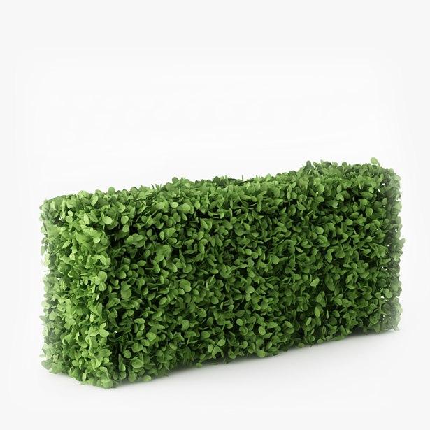 3d bush