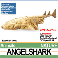 3ds angelshark squatina