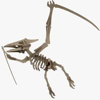 cardboard pteranodon max