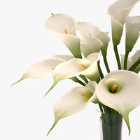 3ds lily callas bouquet