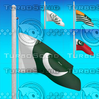 3d model of flags pakistan -