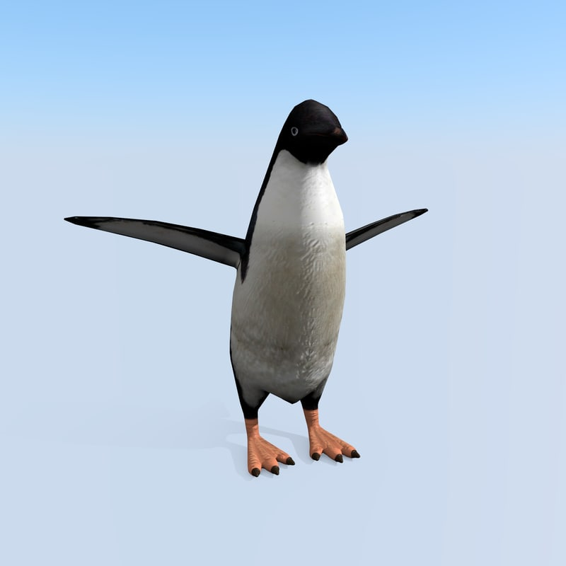 3d penguin rigged games