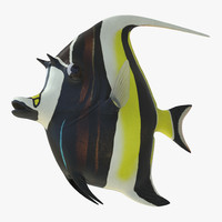 moorish idol fish 3d c4d
