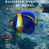 3D Lowpoly Realistic Scribbled Angelfish Model Animated